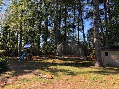 211 S DOUGLAS ST, Goldsboro, NC 27534 - Photo 2