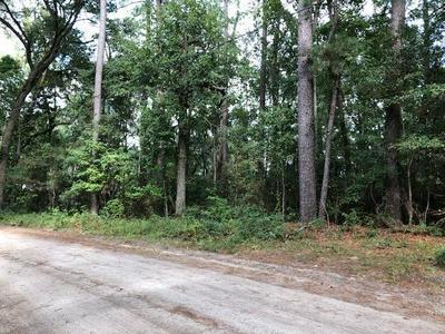 LOT 10 CIRCLE ROAD, Midway, GA 31320 - Photo 1