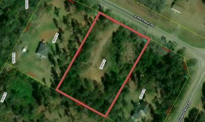 000 LEWIS FRASIER ROAD, Riceboro, GA 31323 - Photo 1