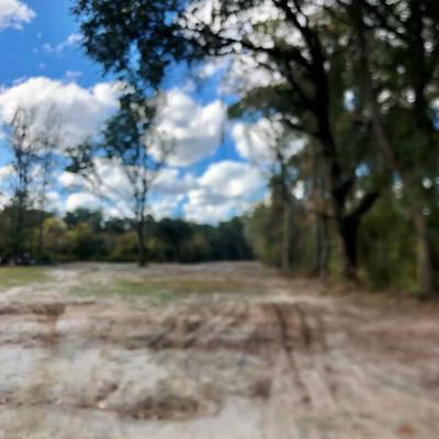 5.34 AC HIGHWAY 17, Riceboro, GA 31323 - Photo 2