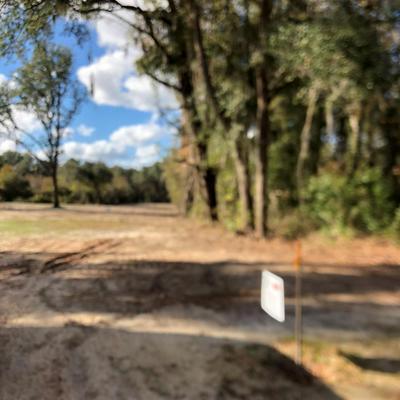 5.34 AC HIGHWAY 17, Riceboro, GA 31323 - Photo 1