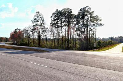 0000 HIGHWAY 301, Jesup, GA 31560 - Photo 2