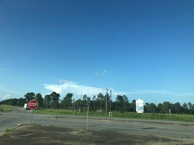 SITE 1 SOUTH NEWPORT DRIVE, Riceboro, GA 31323 - Photo 2