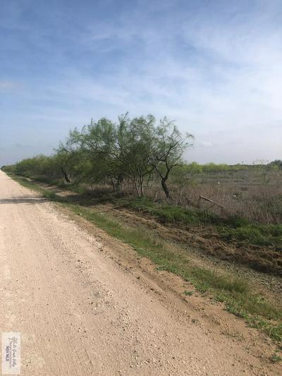 00 N PARKER RD., LA FERIA, TX 78559 - Photo 1