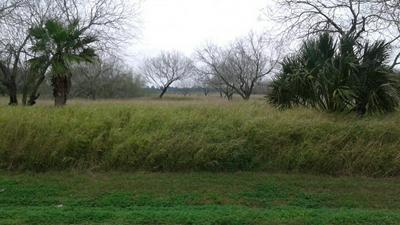 00 ANDERSON AVE, Olmito, TX 78575 - Photo 1