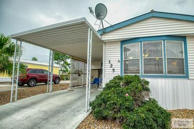 125 APACHE DR, HARLINGEN, TX 78552 - Photo 2