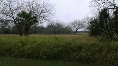 00 ANDERSON AVE, Olmito, TX 78575 - Photo 2