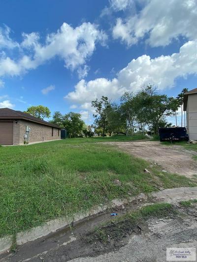 0 PALMA BLANCA DR., Brownsville, TX 78521 - Photo 2