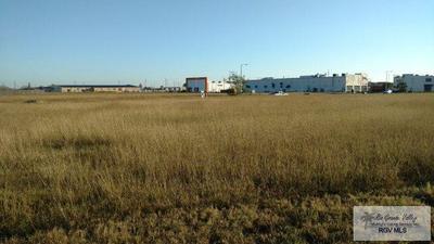 0 SPRINGMART BLVD., Brownsville, TX 78526 - Photo 1