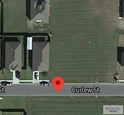000 CURLEW ST, HARLINGEN, TX 78550 - Photo 1