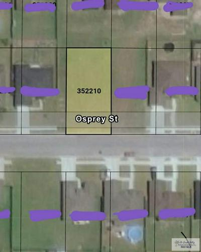 000 OSPREY ST., HARLINGEN, TX 78550 - Photo 2