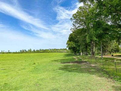 0 HOLLIMAN RD., Ovett, MS 39464 - Photo 1