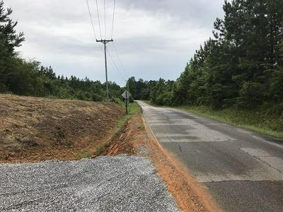 0 PARCEL 4 - SCRUGGS RD., Sumrall, MS 39482 - Photo 2
