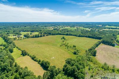 46 ACRES HWY 42, Sumrall, MS 39482 - Photo 2