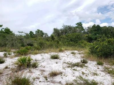 412 SANDPIPER ST, Lake Placid, FL 33852 - Photo 2