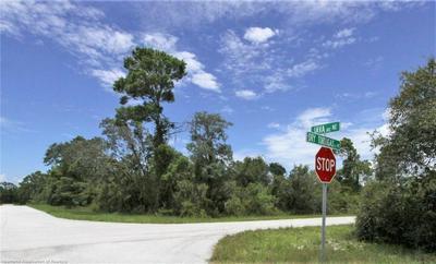 216 JAVA NE AVENUE, Lake Placid, FL 33852 - Photo 2