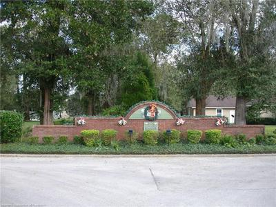 1023 BRIARWOOD DR, Wauchula, FL 33873 - Photo 1
