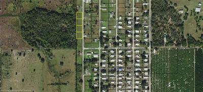 1219, Wauchula, FL 33873 - Photo 2
