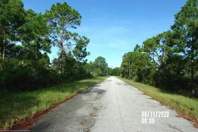 543 EMBRACER ST NW, Lake Placid, FL 33852 - Photo 2