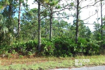 543 EMBRACER ST NW, Lake Placid, FL 33852 - Photo 1
