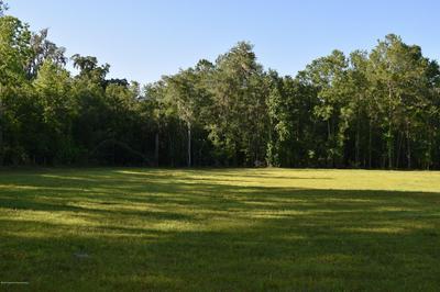 6059 SWIMMING HOLE LN, Brooksville, FL 34601 - Photo 1