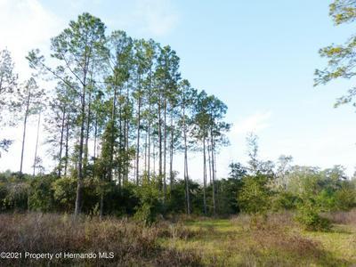 0 EVA LOU, Brooksville, FL 34602 - Photo 2