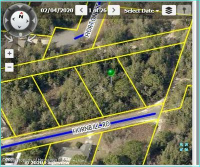 13071 HORNBILL RD, BROOKSVILLE, FL 34614 - Photo 1