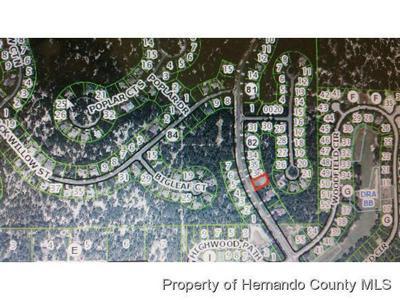 144 CORKWOOD BLVD, Homosassa, FL 34446 - Photo 1