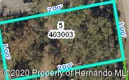 000 PINEHURST DRIVE, Spring Hill, FL 34606 - Photo 1
