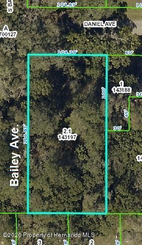 211 DANIEL AVE, BROOKSVILLE, FL 34601 - Photo 1