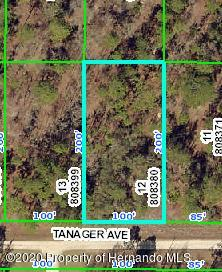 0 TANAGER, WEEKI WACHEE, FL 34614 - Photo 2