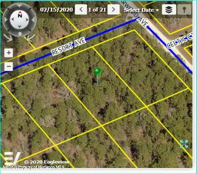 0 RESORT AVENUE, BROOKSVILLE, FL 34614 - Photo 2