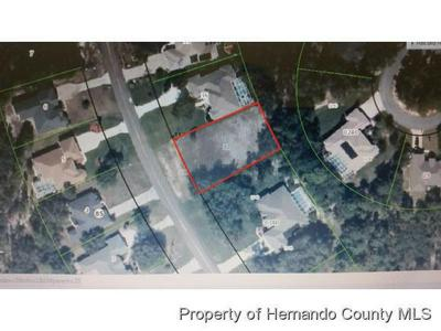 144 CORKWOOD BLVD, Homosassa, FL 34446 - Photo 2