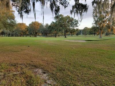 00 EPPLEY DRIVE, Brooksville, FL 34601 - Photo 2