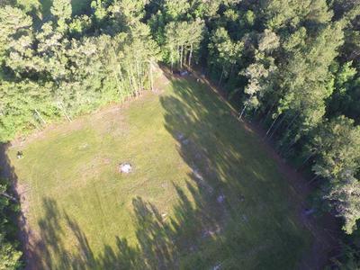 6059 SWIMMING HOLE LN, Brooksville, FL 34601 - Photo 2