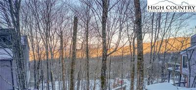 38 SLOPES LN, Beech Mountain, NC 28604 - Photo 2