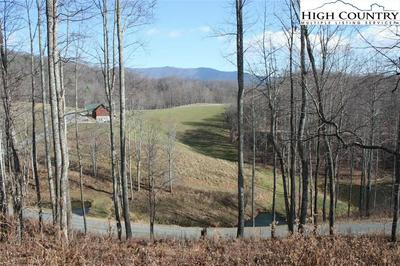 53 LOST RIDGE TRAIL, Vilas, NC 28692 - Photo 2