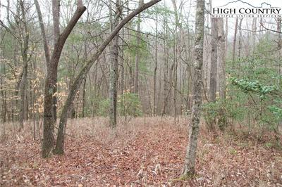 2261 W NC HIGHWAY 268, Wilkesboro, NC 28697 - Photo 2