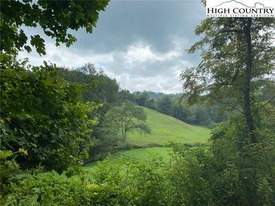 TBD INTERNATIONAL WAY, Piney Creek, NC 28663 - Photo 1
