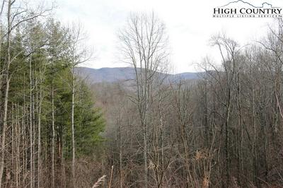 LOT 50 PARADISE VALLEY ROAD, Creston, NC 28615 - Photo 2
