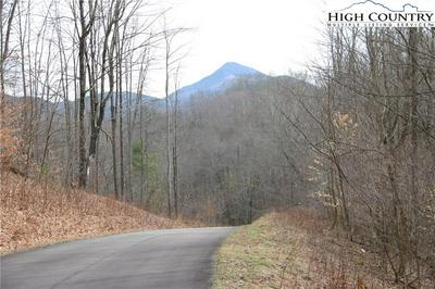 LOT 65 PARADISE VALLEY ROAD, Creston, NC 28615 - Photo 2