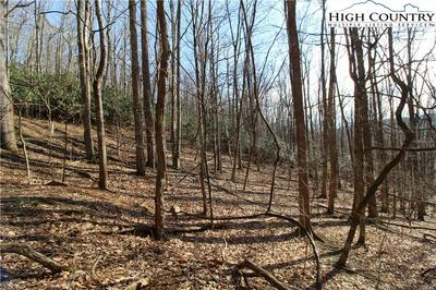 LOT 7 INDIAN COVE DRIVE, West Jefferson, NC 28694 - Photo 2