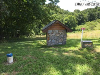 TBD AMERICAN DRIVE, Piney Creek, NC 28663 - Photo 2