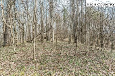 TBD LOT 4A RIVER BREEZE DRIVE, Creston, NC 28615 - Photo 2