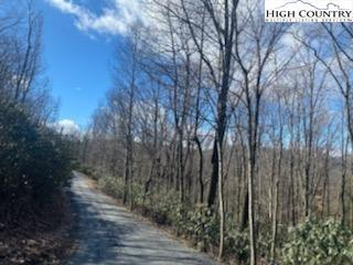 TBD (LOT 15) INDIAN LAKE DRIVE, West Jefferson, NC 28694 - Photo 2