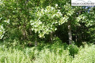 LOT #44 BERTIE CIRCLE, Piney Creek, NC 28663 - Photo 2