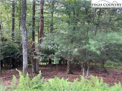 60 COZY CABINS CIR, Piney Creek, NC 28663 - Photo 1