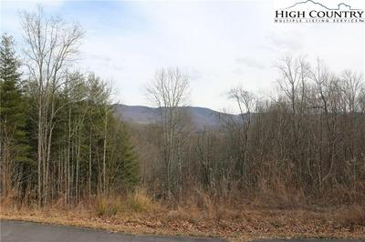 LOT 65 & 50 PARADISE VALLEY ROAD, Creston, NC 28615 - Photo 1