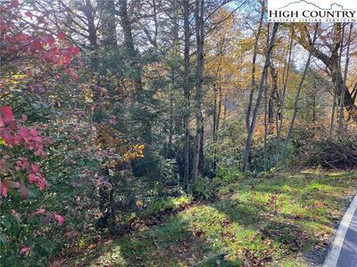 267 HERITAGE LN, Blowing Rock, NC 28605 - Photo 1