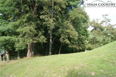 LOT 310 COTTON TAIL LANE, Piney Creek, NC 28663 - Photo 1